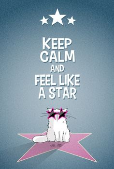 Keep Calm and feel like a cat... STARCAT