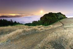 Tamalpais in Moonlight - Marin County, California by PatrickSmithPhotography, via Flickr