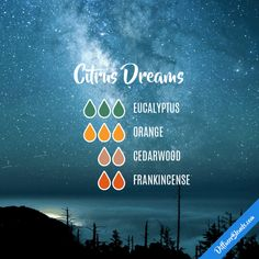 Citrus Dreams - Essential Oil Diffuser Blend
