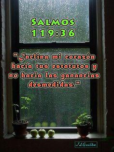 """- Salmos 119:36 - """"Inclina mi corazón hacia tus estatutos y no hacia las ganancias desmedidas."""""""