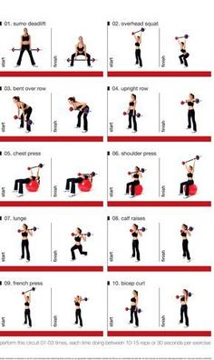 Barbell Circuit for exercising at home