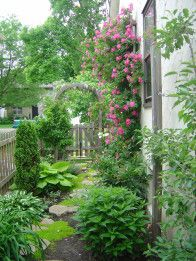 Climbing roses, natural stone pavers and Irish Moss flourish on the south-side of the house