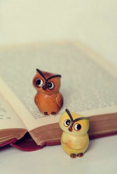 how cute are these little owls!