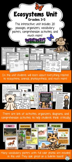 Ecosystems Unit with 20 passages, organizers, vocabulary posters, comprehension and connection activities, and so much more! Your students will love learning all about ecosystems with this BEST SELLER! Plus students will meet a famous environmentalist, John Muir!