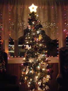 My Christmas Tree, 2011