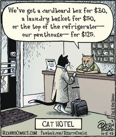 "Bizarro cartoon (October 5, 2012) ""Cat Hotel"""
