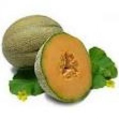 Musk Melon Oil Price: $5.00