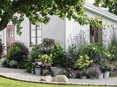 """""""Jag tycker att det är väldigt mysigt vid boden och den lilla bänken, där har jag bra utsikt över trädgården samtidigt som det är lä"""", säger Karolina. Side Garden, Terrace Garden, Garden Spaces, Herb Garden, Garden Plants, Garden Tools, Residential Landscaping, Utsikt, Colorful Garden"""