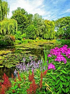 Claude Monets Garden,Giverny France: