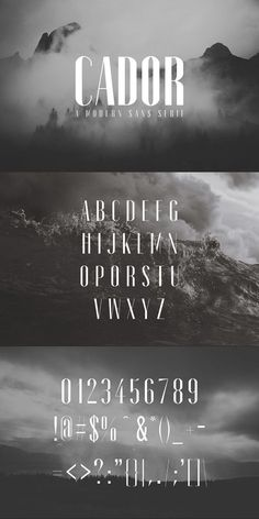 Cador Sans Serif Font Family Pack English Characters, Sans Serif Typeface, Lettering Styles, Font Setting, Modern Fonts, Web Layout, Font Family, New Fonts, Logo Design Inspiration