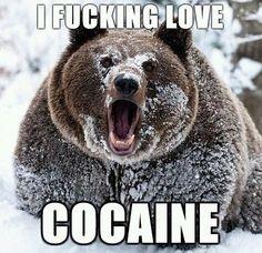 Makes me laugh so hard... Cocaine!!!!