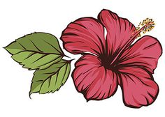 Flower Drawings hibiscus tattoo - If you are thinking of going for a flower tattoo, then do consider hibiscus flower tattoos. Browse through the various hibiscus tattoo designs given in this ThoughtfulTattoos piece, and pick something bright and elegant. Hawaiian Flower Tattoos, Hibiscus Flower Tattoos, Colorful Flower Tattoo, Hawaiian Flowers, Flower Tattoo Designs, Hibiscus Flowers, Colorful Flowers, Flower Art, Hibiscus Flower Drawing