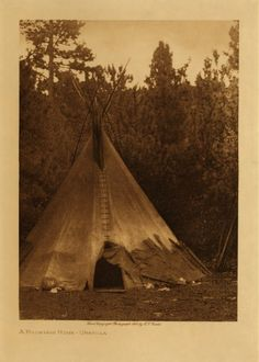 Native American Tribe Umatilla | Native American Encyclopedia