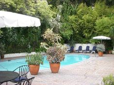 Pool deck nestled against foilage line. Chateau Marmont Los Angeles, California