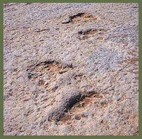 Monumento Natural das Pegadas dos Dinossáurios da Serra de Aire