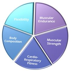 5 elements of fitness Health And Physical Education, Health Class, Physical Fitness, Pe Lessons, Pe Ideas, Exercise Physiology, 5 Elements, Bones And Muscles, Fitness Photos