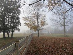 New England Farm in Winter Fog