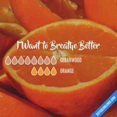 I Want to Breathe Better - Essential Oil Diffuser Blend