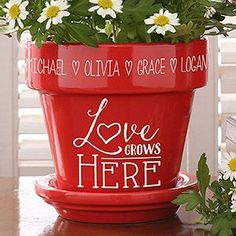 Buy Love Grows Here Personalized Flower Pots you can customize with your own text. Add names custom engraved on the flower pot above the Love grows Here design. Types Of Flowers, Love Flowers, Diy Flowers, Flower Diy, Fall Flowers, Beautiful Flowers, Flower Pot Crafts, Clay Pot Crafts, Painted Flower Pots