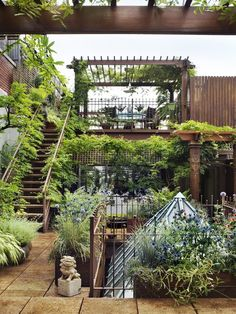 Beautiful terraced garden with various levels. Love how the staircase is softened. Ordinarily this type of staircase is not attractive, but this one works nicely, leading to the pergola at the top level.