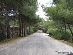 Romantic road Romantic Road, Country Roads, Island, Landscape, Scenery, Islands, Corner Landscaping