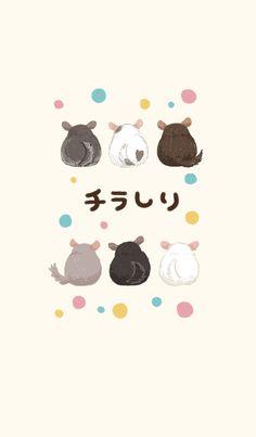 Cute Chinchilla Butt Phone Theme