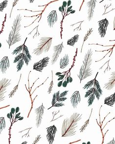 Sara Boccaccini Meadows // Some pine patterns collected from the California forests Patterns In Nature, Textures Patterns, Print Patterns, Nature Pattern, Forest Illustration, Pattern Illustration, Watercolour Illustration, Motif Floral, Floral Design