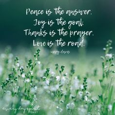 Wishing you peace, joy, gratitude and a road paved with love. xo You can find the beautiful book of inspirations and affirmations for every day of the year at www.everydayspirit.net xo #prayer #peace #inspirational