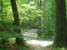 bike path from Alexandria, Virginia to Mount Vernon -- spent many hours biking this trail!