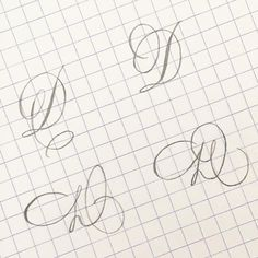 D for the challenge Top two are Copperplate inspired and bottom two are inspired. I haven't studied… Flourish Calligraphy, Calligraphy Worksheet, Calligraphy Drawing, Copperplate Calligraphy, How To Write Calligraphy, Calligraphy Handwriting, Calligraphy Letters, Penmanship, Cursive