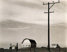 Edward Weston • Barn and Telephone Pole