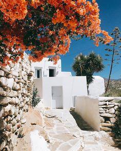 C h o r a #chora #ios #cyclades #island #greece