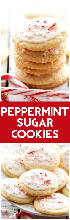Peppermint Sugar Cookies... These cookies are AMAZING and perfect for the holidays! They are soft and chewy with the perfect amount of peppermint! These will be one cookie you want to make over and over again!
