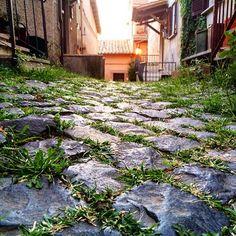 https://flic.kr/p/xSib1F   How gorgeous is this little road in Formello ? #upsticksandgo #formello #travel #travelingtheworld #italia #italy #loveitaly #michfrost #exploring #cobbledstreets #streetsineurope #streetscape