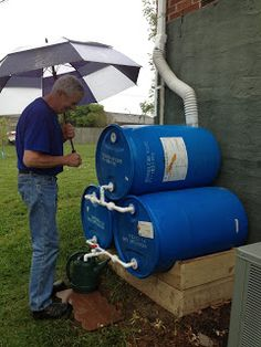 Last year, my Dad rigged up a 55 gal drum as a rain barrel. So I convinced him I needed more rain barrel. Rain Water Barrel, Rain Barrel System, Rain Barrels, Rain Barrel Stand, Water Catchment, Rain Catchment System, Water Collection System, Rainwater Harvesting System, Water Storage Tanks