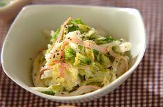 白菜コールスローのレシピ・作り方 - 簡単プロの料理レシピ | E・レシピ