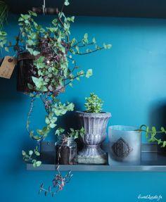 Idées déco : étagères végétales What U Need, Love Is All, Decoration, Feels, Home, Diy Room Decor, Green, Decor, Ad Home