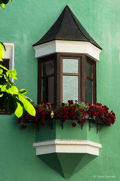window box, vipiteno, italy | architectural details + container gardening