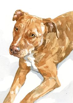 Custom Dog Portrait - 5x7 - Plain background | david scheirer watercolors