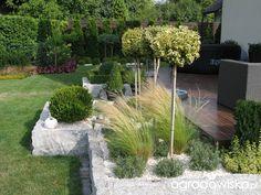 Ogród tosi