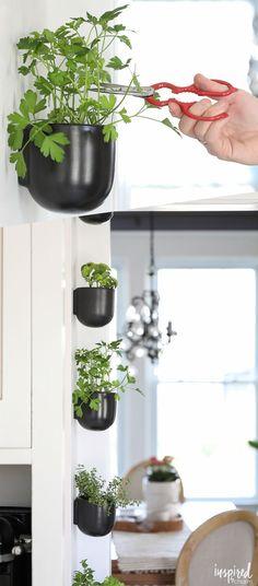 DIY Kitchen Herb Garden - vertical wall garden - hanging wall pots - modern herb garden #wallgardens #moderngarden #verticalherbgardens