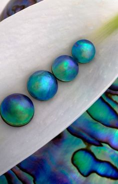Jewelry, one day- Blue Eyris Pearls - Pearls from the sea creatures known as abalone are incredibly rare. They cannot be cultured like the pearls from mussels and oysters; abalone are all hemophiliacs. They bleed to death when injected with a nucleus. Crystals Minerals, Rocks And Minerals, Crystals And Gemstones, Stones And Crystals, Gem Stones, Rocks And Gems, Sea Creatures, Polymer Clay, Creations
