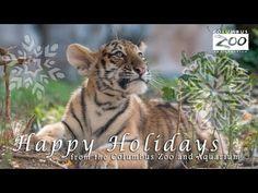 Happy Holidays from the Columbus Zoo and Aquarium Family
