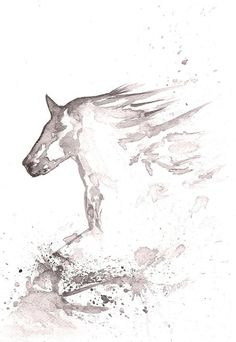 1000+ ideas about Horse in Gallop B&W Art Watercolor Painting ...