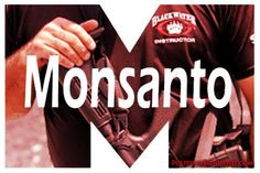 Don't know of the reliability of this.  Note also the Gates Foundation link, which I no longer trust as philanthropic.  Yes, Monsanto Actually DID Buy the BLACKWATER Mercenary Group!