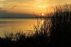 Sunset over Lake Apopka.
