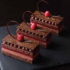 Chocolate Raspberry Ganache Cake – three layer cake (w/ Recipe) Fancy Desserts, Gourmet Desserts, Plated Desserts, Gourmet Recipes, Cake Recipes, Salted Caramel Chocolate, Chocolate Caramels, Raspberry Ganache, Opera Cake