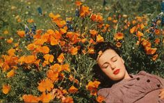 A woman resting amongst the flowers in Central Valley, California, 1954.