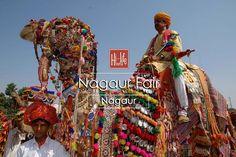 A fair that you can't afford to miss- Nagaur Fair Nagaur.