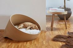 German-based company MiaCara, who originally produced only dog products, recently added a line of incredible modern cat furniture that is possibly some of the best I've seen. Tap the link Now - The Best Cat Products We Found Worldwid